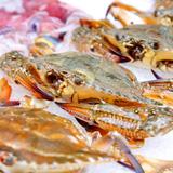 Buffet hải sản TBQ & hơn 150 món ăn Âu Á