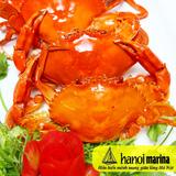 Buffet nhà hàng Marina - Chắt chiu ẩm thực Việt