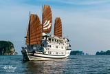 2 ngày khám phá Hạ Long cùng du thuyền Bhaya