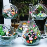 Bình hoa cúc Nhật - Official Snowy Flower Vietnam