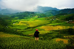 Du lịch Sapa - Khám phá thiên nhiên nguyên sơ