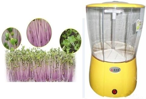 Máy trồng giá đỗ, rau mầm MAGIC HOME Công nghệ Hàn Quốc - Trồng rau xanh tại nhà - Chỉ 650.000đ