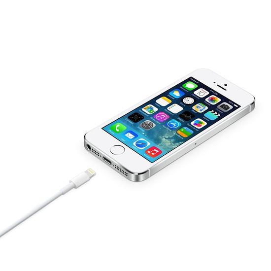 Bộ sạc Iphone 5,5s cao cấp ( dây dài 3m)