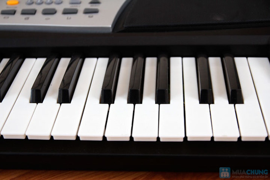 đàn organ xy 893 a _ 800 K