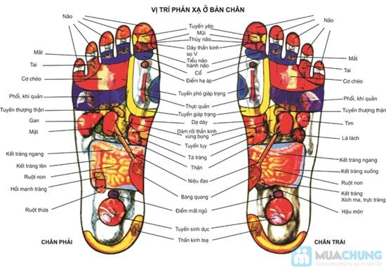 Máy mát xa chân cao cấp Nhật Bản xoa bóp bấm huyệt bàn chân, bắp chân thế hệ mới tốt nhất