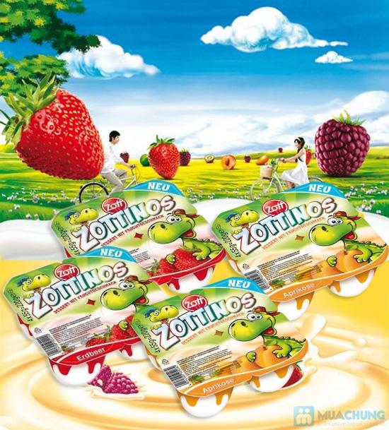Sữa chua Zottinos của Đức - Món quà tuyệt vời cho sức khỏe của gia đình bạn - Chỉ 84.000đ/04 vỉ/16 hộp - 7