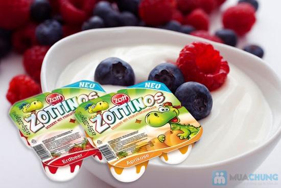 Sữa chua Zottinos của Đức - Món quà tuyệt vời cho sức khỏe của gia đình bạn - Chỉ 84.000đ/04 vỉ/16 hộp - 6