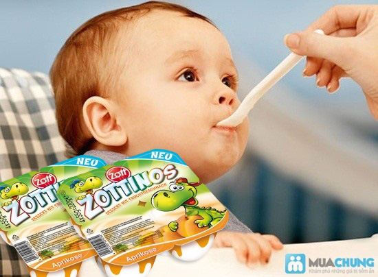 Sữa chua Zottinos của Đức - Món quà tuyệt vời cho sức khỏe của gia đình bạn - Chỉ 84.000đ/04 vỉ/16 hộp - 9