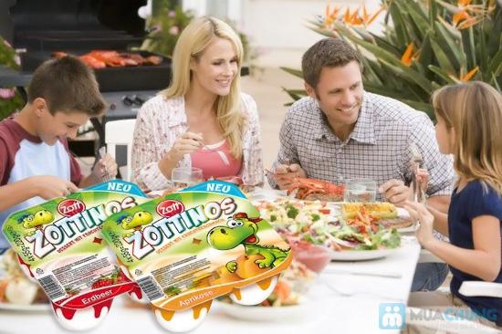 Sữa chua Zottinos của Đức - Món quà tuyệt vời cho sức khỏe của gia đình bạn - Chỉ 84.000đ/04 vỉ/16 hộp - 10