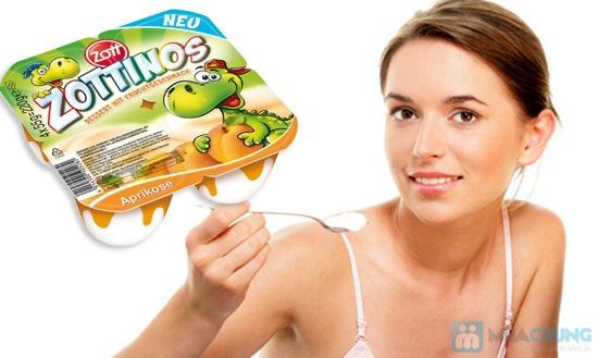 Sữa chua Zottinos của Đức - Món quà tuyệt vời cho sức khỏe của gia đình bạn - Chỉ 84.000đ/04 vỉ/16 hộp - 11