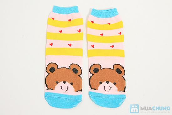 Tất dành cho bạn gái - Giữ ấm và làm điệu cho chân bạn trong mùa lạnh. Chỉ 62.000đ/ 05 đôi - 2