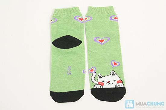 Tất dành cho bạn gái - Giữ ấm và làm điệu cho chân bạn trong mùa lạnh. Chỉ 62.000đ/ 05 đôi - 8