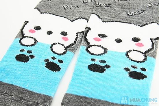 Tất dành cho bạn gái - Giữ ấm và làm điệu cho chân bạn trong mùa lạnh. Chỉ 62.000đ/ 05 đôi - 7