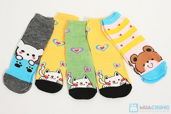 Tất dành cho bạn gái - Giữ ấm và làm điệu cho chân bạn trong mùa lạnh. Chỉ 62.000đ/ 05 đôi - 1