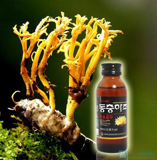 Bồi bổ sức khỏe, kéo dài tuổi thọ với nước uống Đông Trùng Hạ Thảo Hàn Quốc - Chỉ 140.000/01 hộp - 9