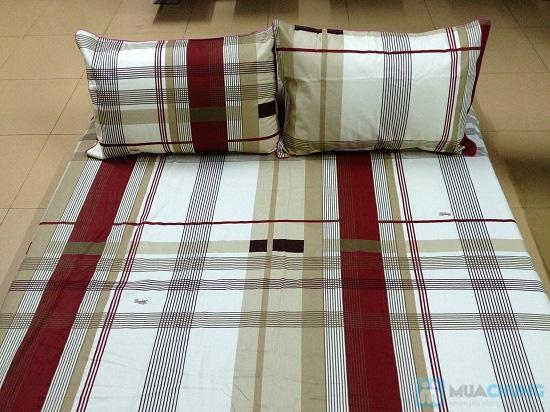 Cho giấc ngủ sâu với bộ Drap + Chăn + 02 vỏ gối nằm + 01 vỏ gối ôm cotton Thắng Lợi - Chỉ 560.000đ/01 bộ - 3