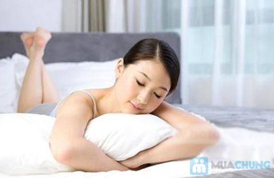 Ruột gối hơi Việt - Món quà yêu thương, mang đến giấc ngủ say nồng cho bạn và gia đình - Chỉ 95.000đ/ 01 chiếc - 2