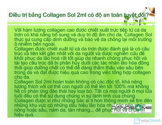 THỰC PHẨM CHỨC NĂNG COLLAGEN SOL - 12