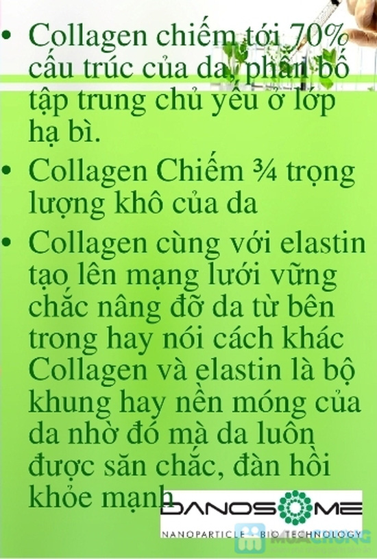 COLLAGEN SOL - 1