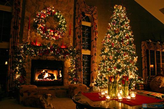 Vòng quế Giáng Sinh - 10