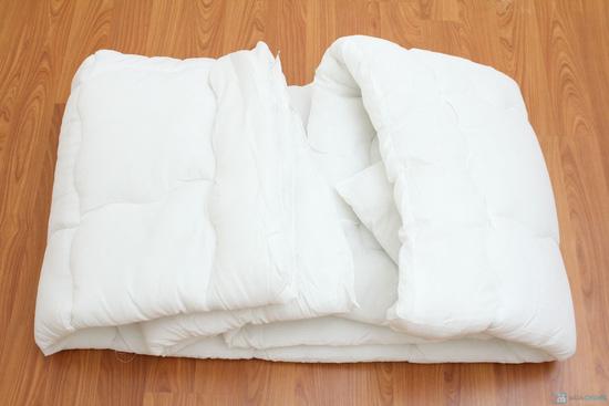 Ruột chăn bông êm ái 2,8kg - Chỉ với 280.000đ - 5