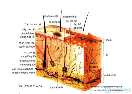 Khóa học chăm sóc da cá nhân trang bị kiến thức cơ bản về cách chăm sóc làn da đúng cách và hiệu quả từ BB Thanh Vân - Chỉ với 120.000đ - 5