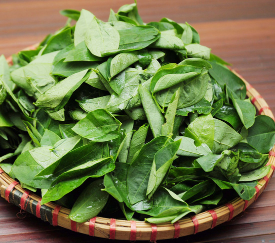 Lẩu canh cua đồng đặc biệt, Bắp bò tươi, Gà ta thơm ngon tại Nhà hàng Thiên Việt - Canh cua đồng - Chỉ với 303.000đ - 12