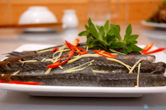 Lựa chọn 1 trong 2 set ăn lẩu cá kèo, lẩu cá tầm tại Nhà hàng chả cá Hà Nội - Chỉ 168.000đ - 2