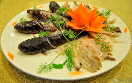 Lẩu cháo bổ dưỡng cao cấp tại Nhà hàng Vạn Vân - Chỉ 1.095.000đ - 3