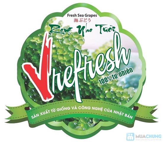 Rong nho Tươi Vrefresh 100% Tự Nhiên - giàu Vitamin, tẩy độc cơ thể, đẹp da. Giống từ Nhật Bản - Chỉ 85.000đ/01 hộp - 1