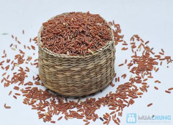 Combo 5 chai gạo Lứt bổ sung vitamin - 1