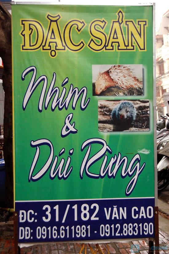 Set ăn lợn rừng Sapa 5 món tại Nhà hàng Nhím No1 - Chỉ 432.000đ - 12