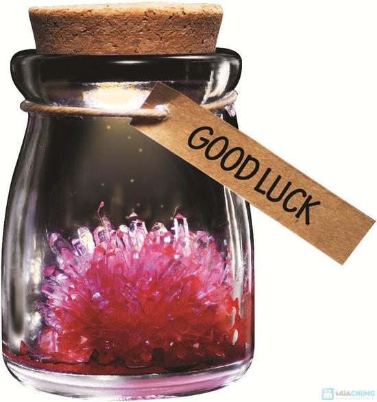 Hoa thủy tinh ước nguyện - món quà độc đáo, dễ thương cho ngày 8/3 - Chỉ 50.000đ - 2