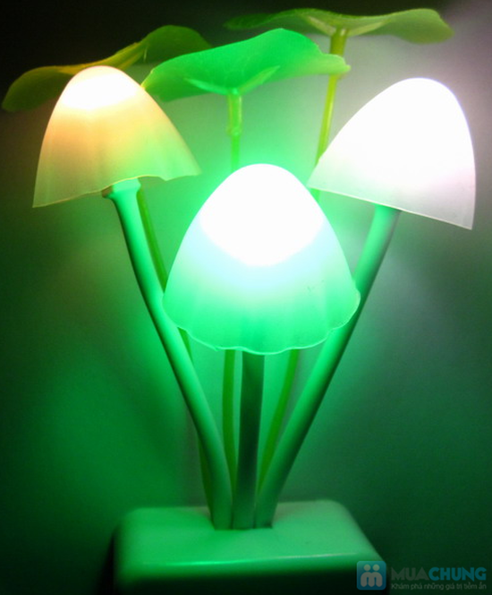 Đèn nấm cảm ứng Avatar - sản phẩm độc đáo, thú vị - Chỉ 69.000đ - 5