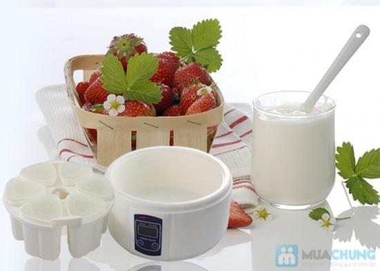 Máy làm sữa chua Misushita - 9