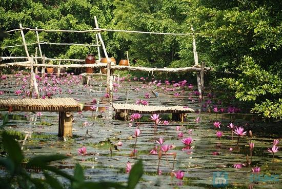 Combo Điểm tâm sáng + vé bơi cho 02 người tại Vườn Ẩm thực Bến Xưa - Chỉ 99.000đ - 11