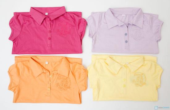 Combo 2 áo cotton cổ bẻ cho bé từ 3 đến 6 tuổi - 1