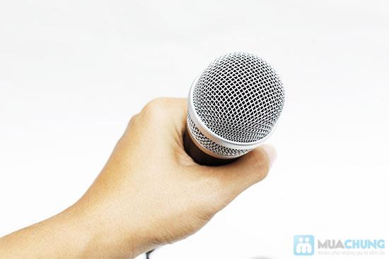 MicroPhones Karaoke E340 - 5