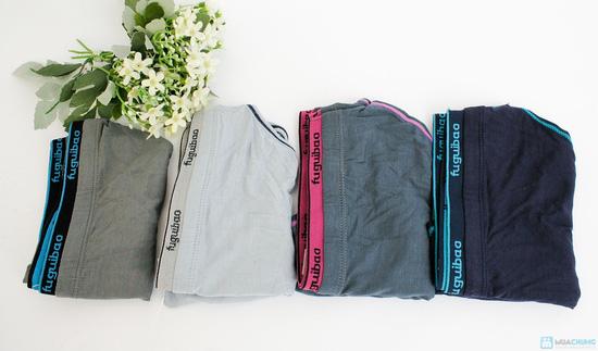 Combo 3 quần lót cotton nam - 8