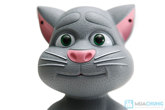 Mèo tom biết nói - Quà 1/6 cho bé - 5