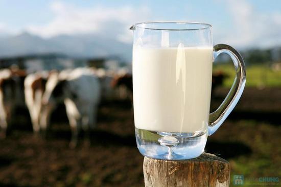 Combo 6 hộp sữa bò tươi nguyên chất Laciate 3,2%-Loại 1L - 1