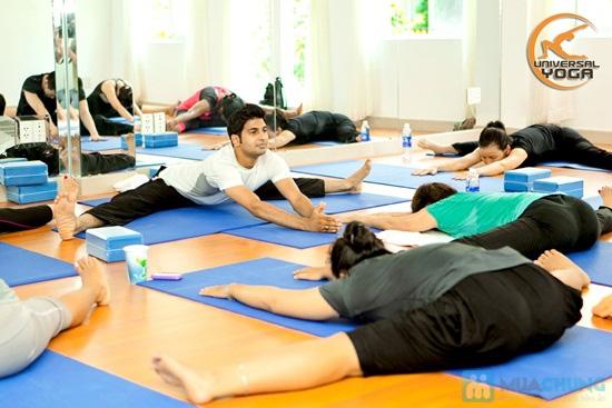 Khóa học Yoga Ấn Độ (01 tháng) tại Universal Yoga - Chỉ 300.000đ - 2