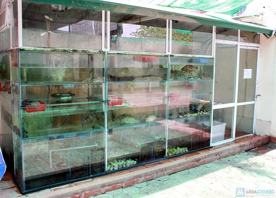 Set ăn Lẩu gà, baba tại Nhà hàng Thiên Hồng Phát - Chỉ 398.000đ - 13