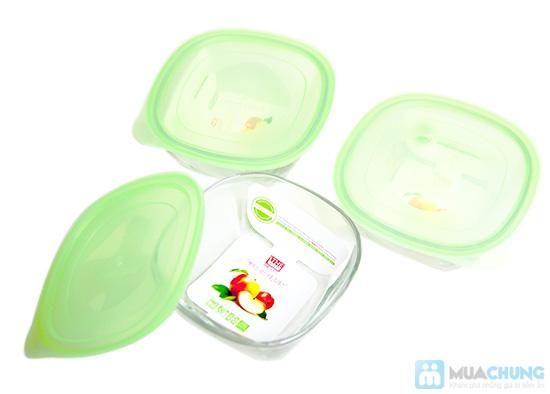 Bộ 3 hộp thuỷ tinh Glass và túi giữ nhiệt - 2