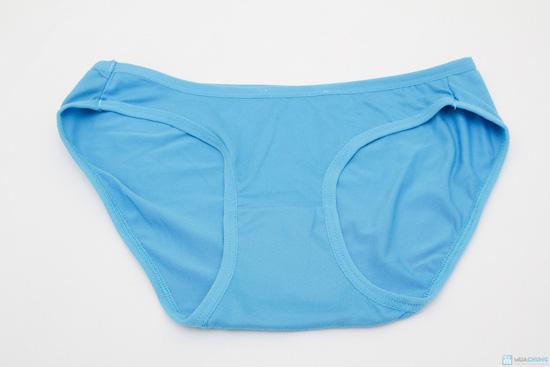 Combo 5 quần lót cotton - 3