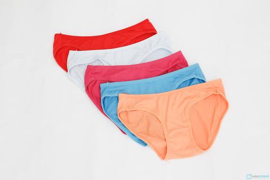 Combo 5 quần lót cotton - 1