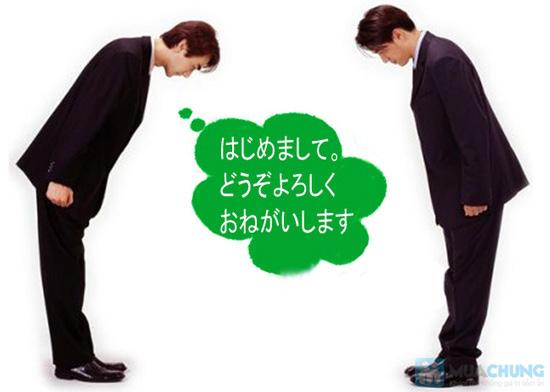 Học tiếng Nhật sơ cấp tại Trung tâm tiếng Nhật MISAKI - 2
