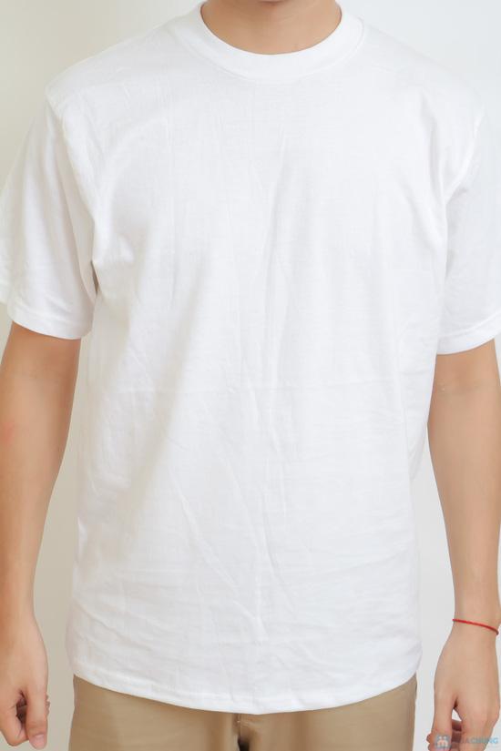 Áo phông nam - 5