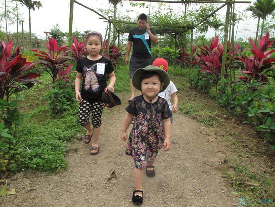Vé vui chơi tại trang trại thiên nhiên Erahouse - 24