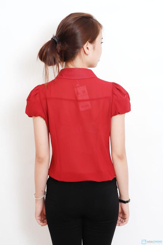 áo sơ mi phối ren - 2